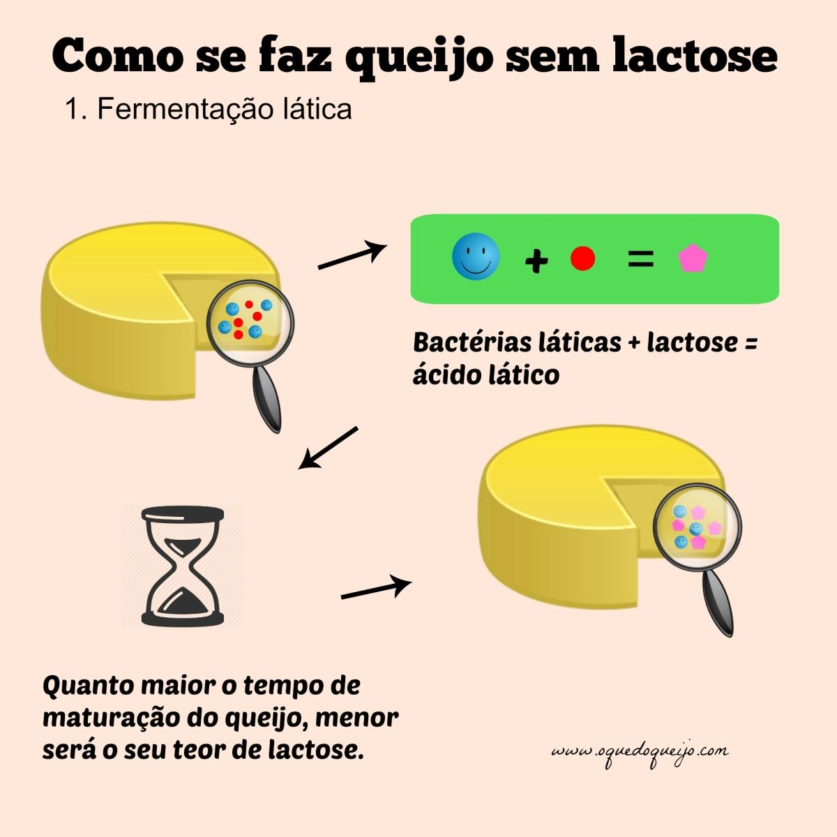 Como se faz queijo sem lactose