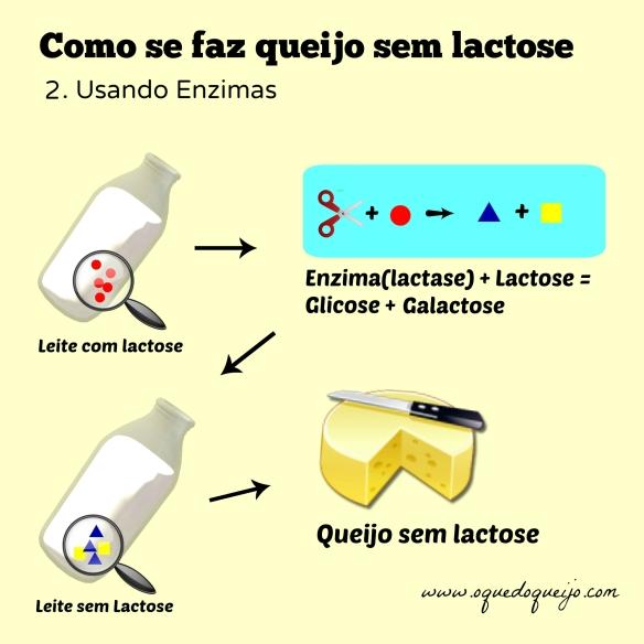 Como fazer queijo sem lactose 2
